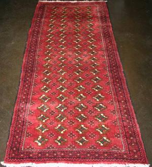 Persian Baluch (336060)