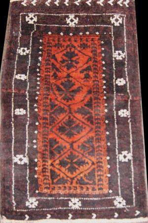 Baluch (334519)