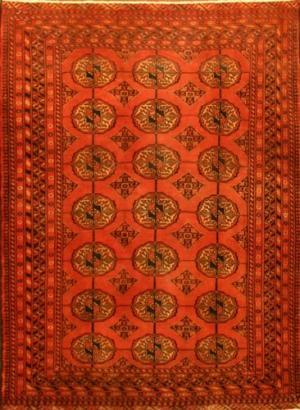 Persian Baluch (104407)