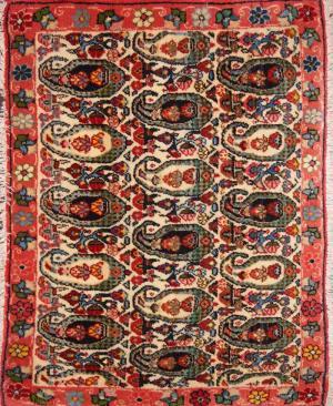 Persian Senneh (70sn2178)