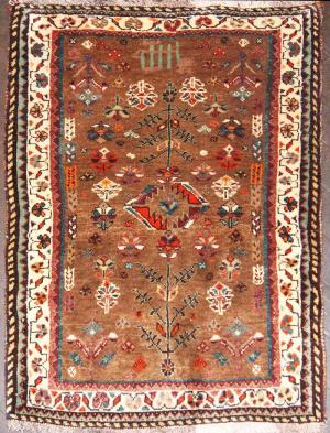 Persian Shiraz (70sz2273)