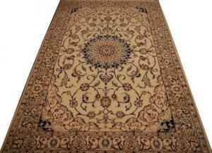 Persian Nain (305669)