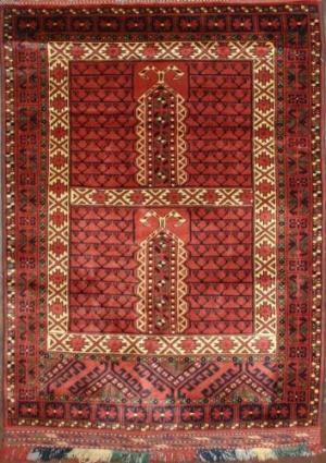 Afghan Hachloo (125093)