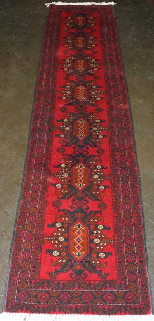 Persian Baluch (335246)