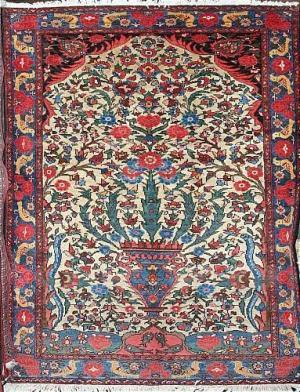 Persian Bakhtiar (105404)