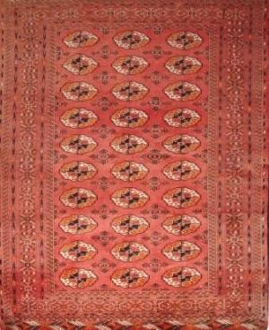 Persian Turkmen (356914)