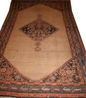Old Persian Malayer (106989)
