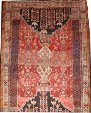 Persian Shiraz Qahquai (32a7067)