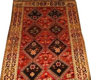 Persian Shiraz Qahquai (327016)