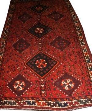 Persian Shiraz Qahquai (327078)