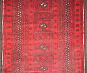 Baluch (334444)