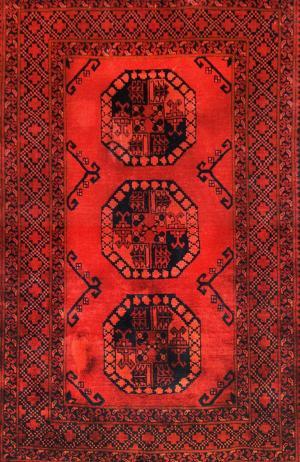 Afghan Khan (Euniq-5595)