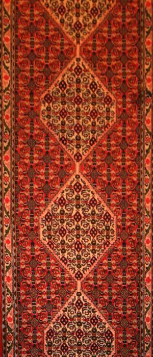 Persian Senneh (A1485)