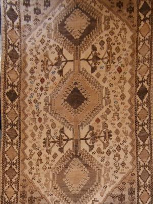 Persian Qashqai (Er116-B7068)