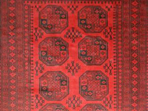 Red Afghan (Er316-B6091)
