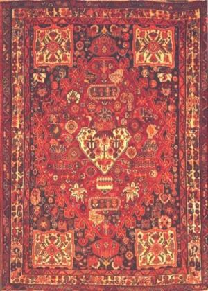 Persian Shiraz Qashquai (111048)