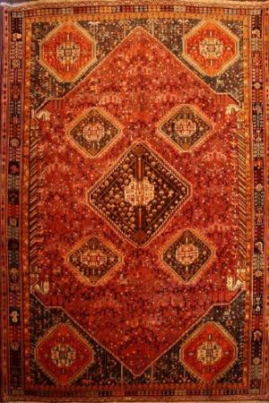 Persian Shiraz (111432)