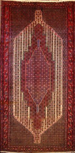 Persian Senneh (111472)