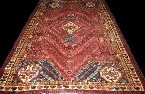 Persian Shiraz (325834)